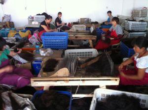 Fábrica de cabelos, cidade de Nantong, Jiangsu (jun./2013).